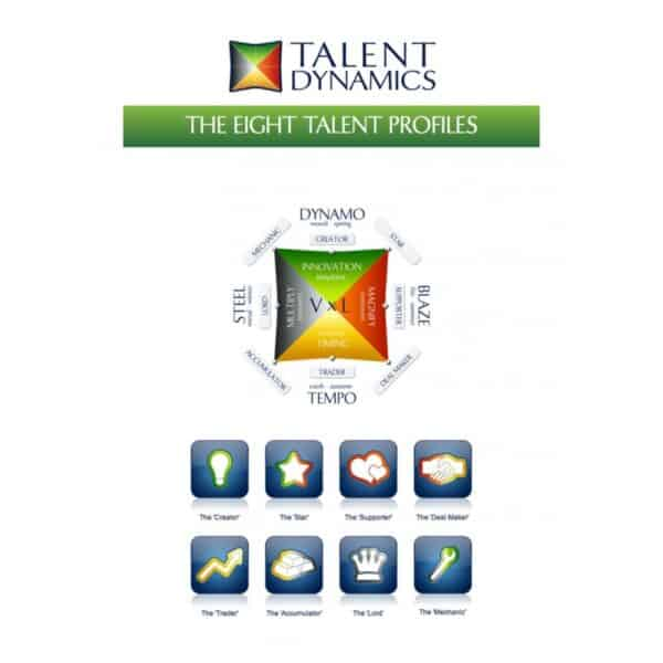 Talent Dynamics Profile Test - To Get Into the Flow Within an Organisation