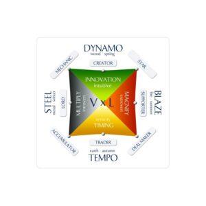Wealth Dynamics Profile Test for Entrepreneurs